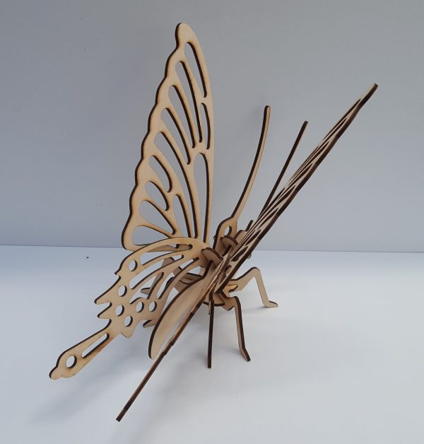 Butterfly 3D model 2 20180522 110903 scaled